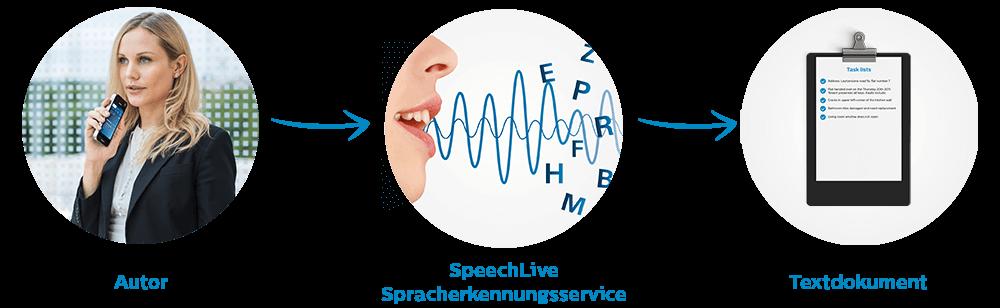 speechrec_workflow